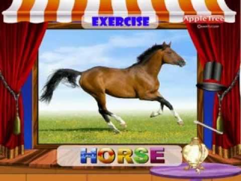 Pronunciation Exercise 6