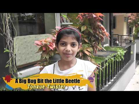 Tongue Twister - A Big Bug The Little Bee..