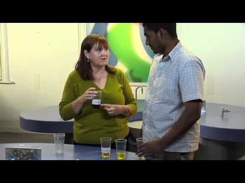 Primary Science Demonstrations: Racing Liquids