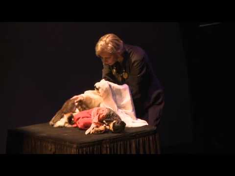 TEDxDirigo - Figures of Speech - The Puppet As Metaphoric Being