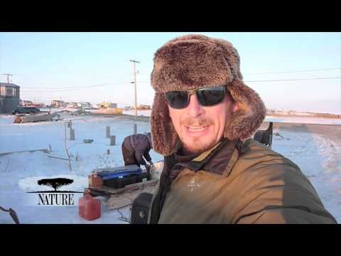 NATURE | Bears of the Last Frontier | Video Diary: Prepping for the Arctic | PBS