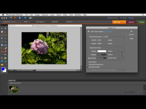 Photoshop Elements: Zooming in on images | lynda.com tutorial
