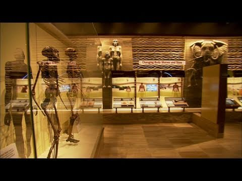 Smithsonian Spotlight: Human Origins: Sneak Peek