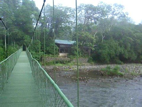 Rio Sarapiqui Costa Rica Footbridge at Selva Verde Lodge