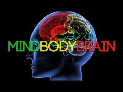 The Mind, Body and Brain Connection