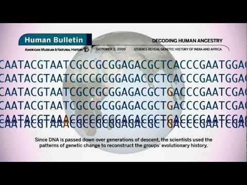 Science Bulletins: Decoding Human Ancestry