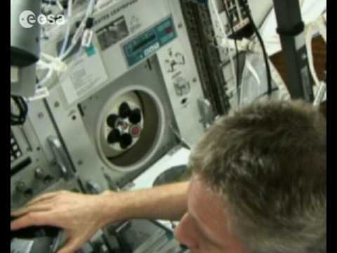 ESA's new astronauts