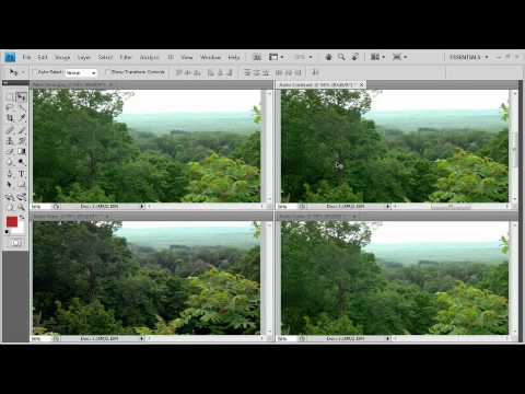 Adobe Photoshop CS4 Essentials Color Correction Tools - Auto Tools Auto Commands