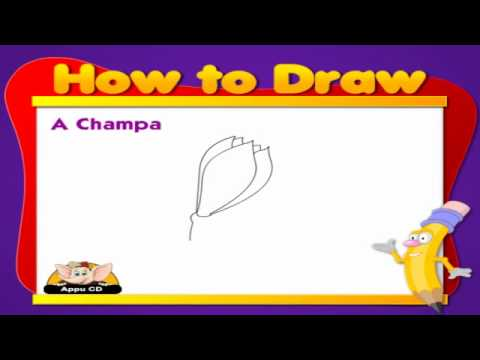 Learn to Draw Flower - Champa