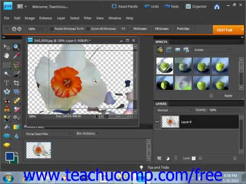 Photoshop Elements 9.0 Tutorial The Magic Eraser Tool Adobe Training Lesson 6.8