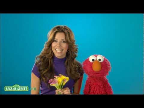 Sesame Street: Eva Longoria: Exquisite