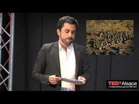TEDxAlsace - Michele Levy Provencal - De la tour d'ivoire au village de huttes