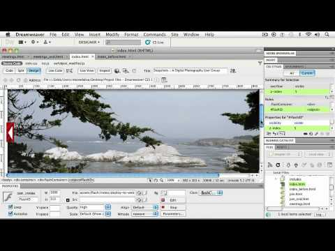 Adobe Dreamweaver CS5  ADDING INTERACTIVITY Inserting a .SWF