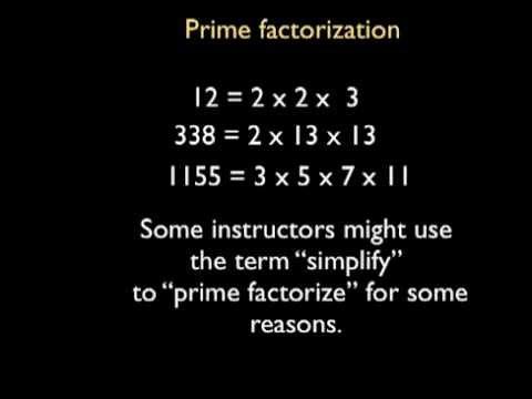 Arithmetic Integers 13