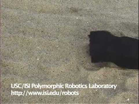 Modular robot's wriggles show greater flexibility 3