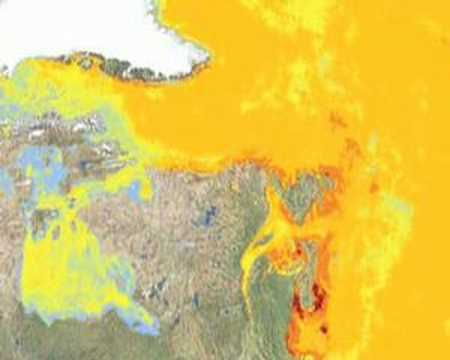 New Scientist video round-up - February 25, 2008