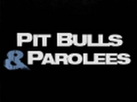 Fall Preview: Pit Bulls & Parolees