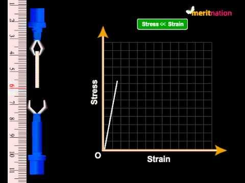 Stress and Strain Test @ Meritnation