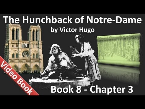 Book 08 - Chapter 3 - The Hunchback of Notre Dame by Victor Hugo