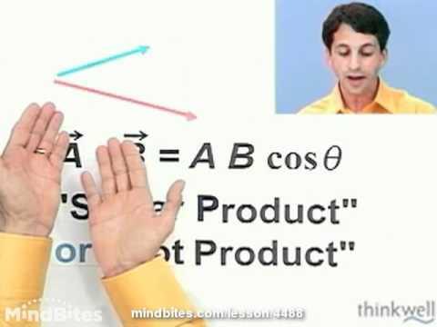 Physics: The Scalar Product