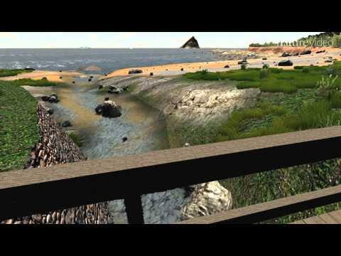 Virtual Environments for Health