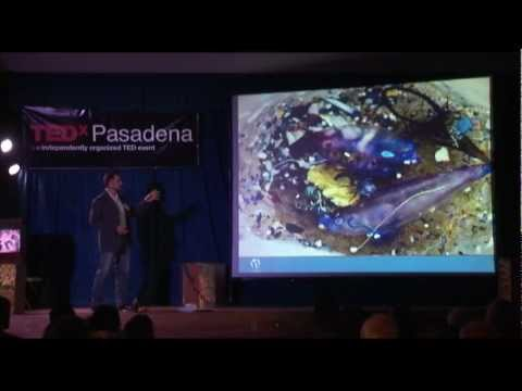 TEDxPasadena - Anna Cummins and Marcus Eriksen - Waste water treatment - 5 Gyres