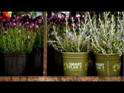 The Home Depot - Flower Power (episode 1) Where Flowers Come From