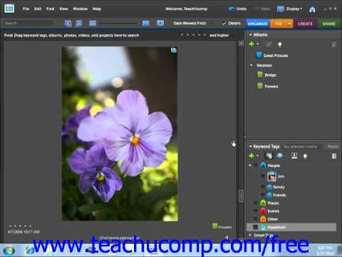 Photoshop Elements 9.0 Tutorial Stacking & Unstacking Adobe Training Lesson 2.15
