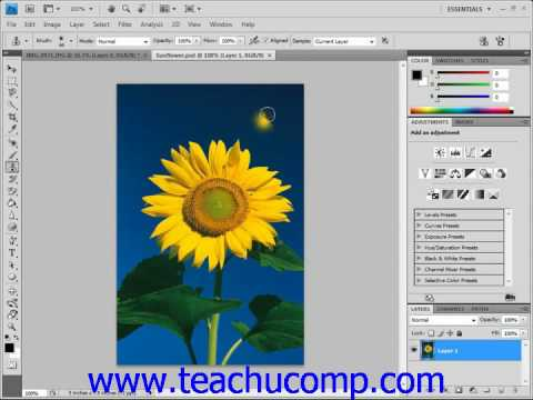 Photoshop Tutorial The Clone Stamp Tool Adobe Training Lesson 14.14
