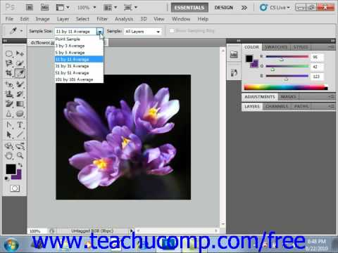 Photoshop CS5 Tutorial Selecting Colors with the Eyedropper Tool Adobe Training Lesson 4.8