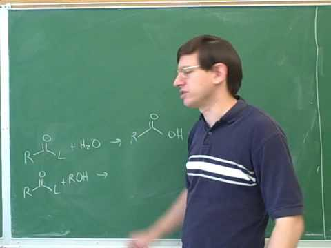 Hydrolysis of carboxylic acid derivatives (15)
