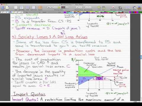 Microeconomics - 95: Tariff pt.2