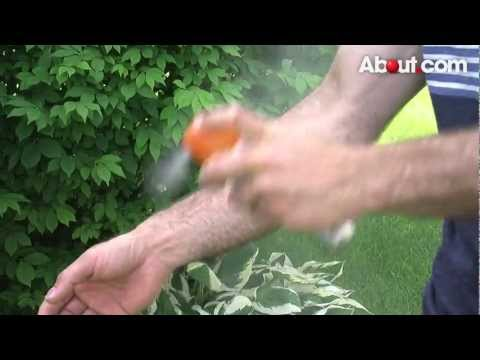 Quick Tip: How to Keep Bugs Away During Outdoor Parties