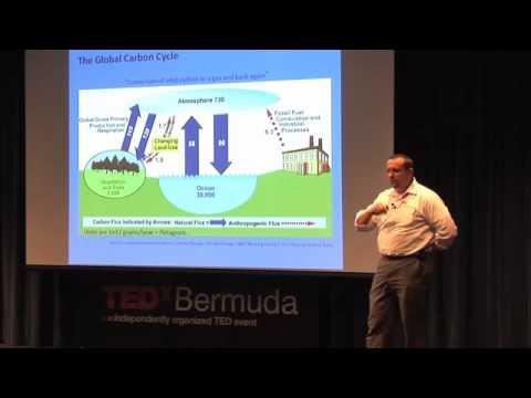 Dr. Michael Lomas - Ocean Heal Thyself - TEDxBermuda 2011