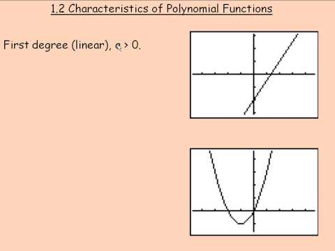 Characteristics of Polynomial Functions