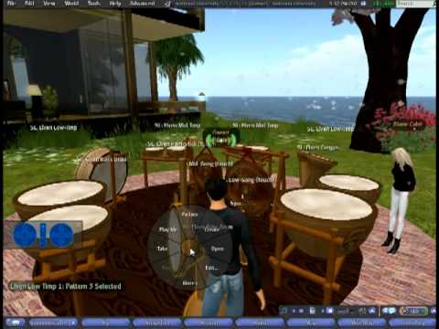 Second Life: Week 1d Chat (410)