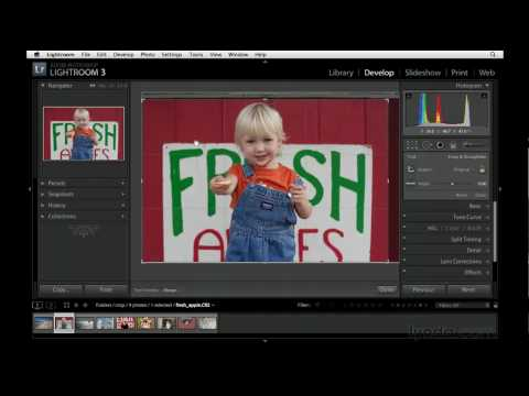 Exploring the crop on camera technique | lynda.com tutorial