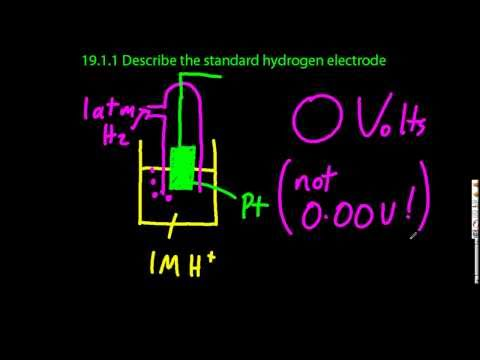 19.1.1 Describe the standard hydrogen electrode IB Chemistry