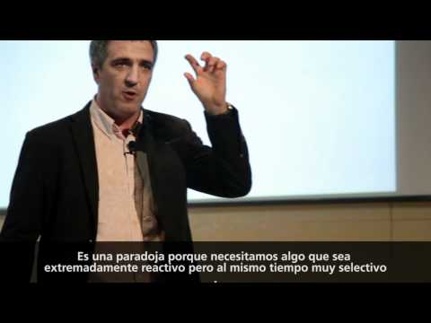 TEDxBarcelona - Miquel Costas - Back into the Iron Age for a Sustainable Future