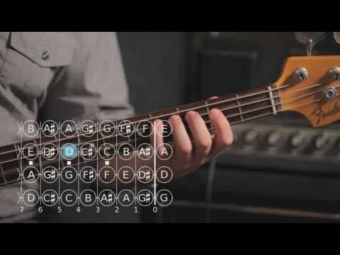 Bass Scales: The Major Scale