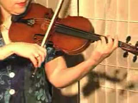 Violin Song Lesson - How To Play Danman's Print Library # 106