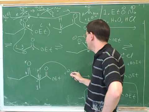 Reactions of enamines and enolates (19)