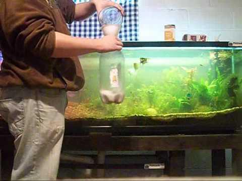 Wayne's Insight How To Diy Co2 For the Aquarium