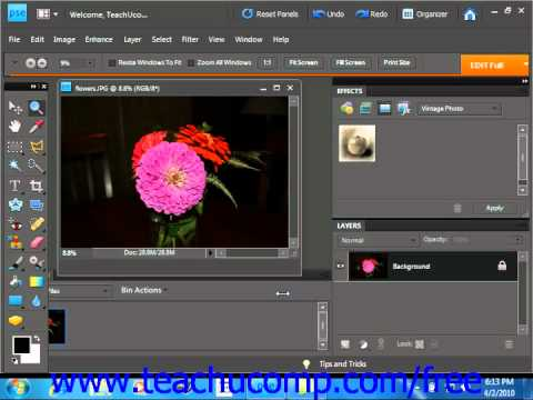 Photoshop Elements 9.0 Tutorial Removing Color Adobe Training Lesson 14.8
