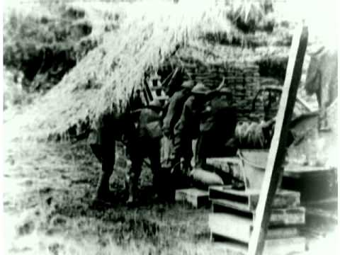 World War I Newsreel Excerpts (252)