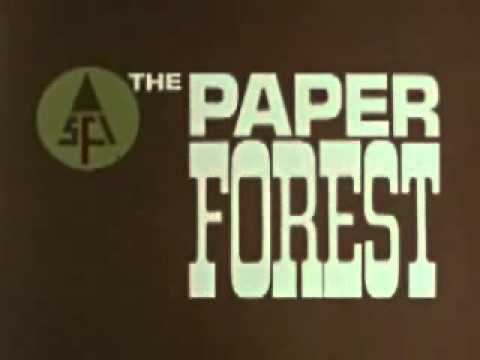 Paper Forest, 1965