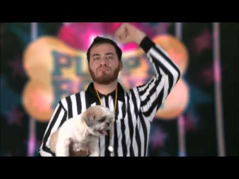 Puppy Bowl: Dance With Me Ellen!
