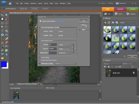Photoshop Elements 7 Tutorial Video - Resizing Photos and Images