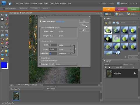 Photoshop Elements 7 Tutorial Video - Resizing Photos and Images