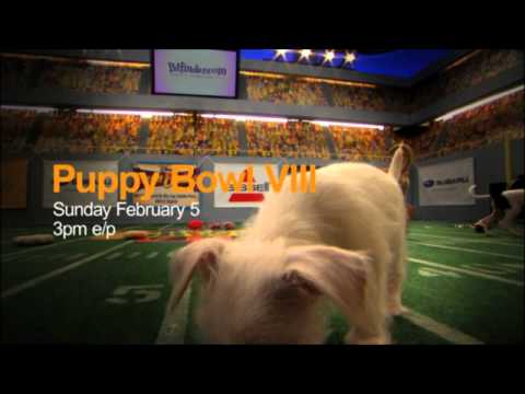 Puppy Bowl VIII - Sunday at 3PM ET/PT*